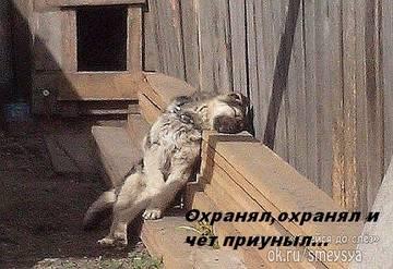 http://s9.uploads.ru/t/dK1hi.jpg