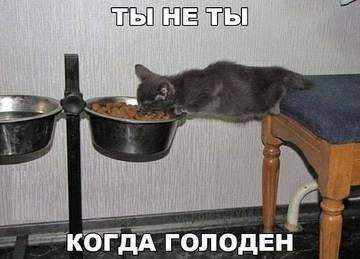 http://s9.uploads.ru/t/dz5jN.jpg