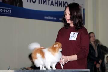 http://s9.uploads.ru/t/eCanD.jpg