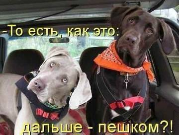http://s9.uploads.ru/t/eXyDJ.jpg