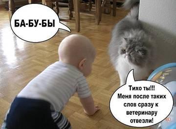 http://s9.uploads.ru/t/fYK56.jpg