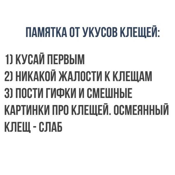 http://s9.uploads.ru/t/fdPn7.jpg