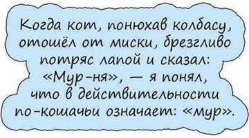 http://s9.uploads.ru/t/frPyW.jpg