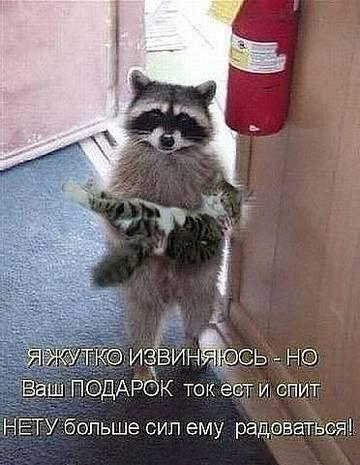 http://s9.uploads.ru/t/gEuPK.jpg