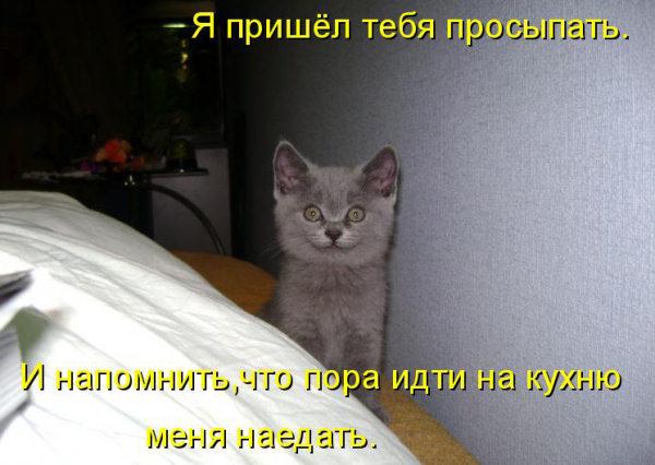 http://s9.uploads.ru/t/gMQ2J.jpg