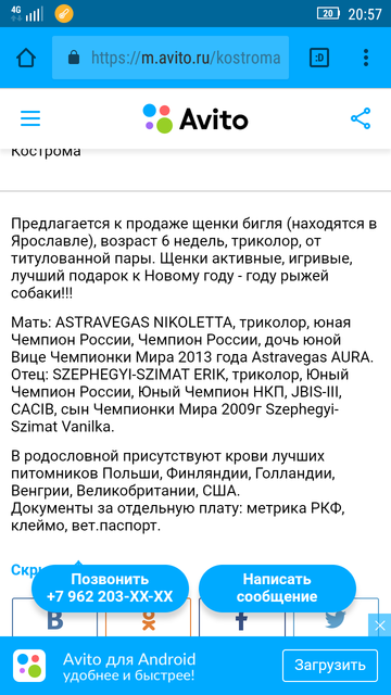 http://s9.uploads.ru/t/gWz61.png