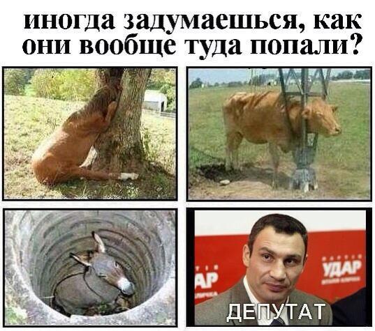 http://s9.uploads.ru/t/gZ19n.jpg