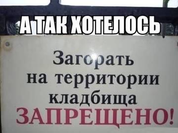 http://s9.uploads.ru/t/gaL4f.jpg