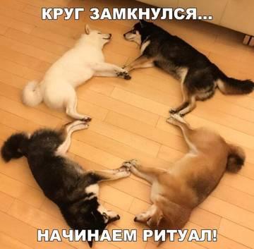 http://s9.uploads.ru/t/gtjl8.jpg