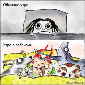 http://s9.uploads.ru/t/gvKLm.jpg