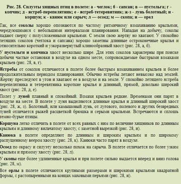 http://s9.uploads.ru/t/hQYaI.jpg
