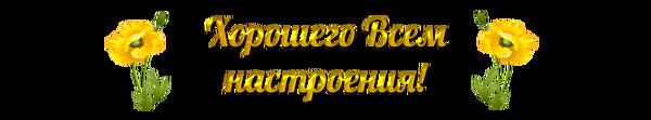 http://s9.uploads.ru/t/hYoQ8.png