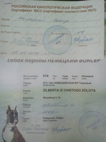 http://s9.uploads.ru/t/i8SPB.jpg