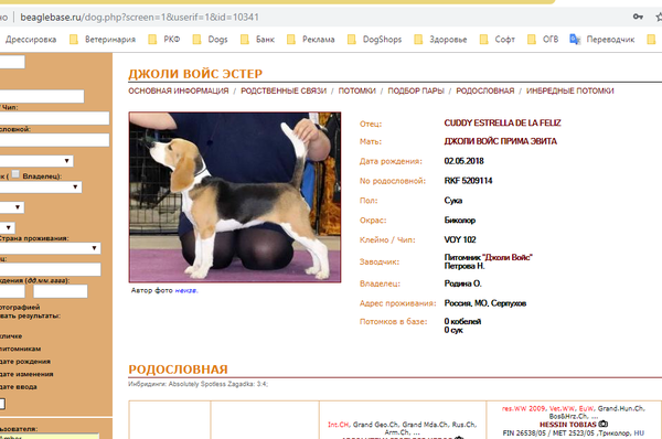 http://s9.uploads.ru/t/iNfsj.png