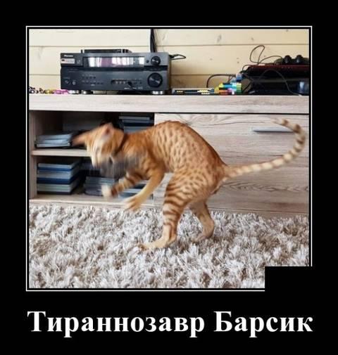 http://s9.uploads.ru/t/j1TSx.jpg