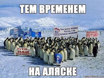 http://s9.uploads.ru/t/jlkVi.jpg