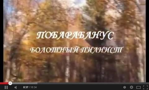 http://s9.uploads.ru/t/kazl5.jpg