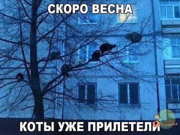 http://s9.uploads.ru/t/l4xzv.jpg