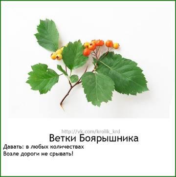 http://s9.uploads.ru/t/lEvRh.jpg