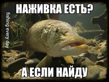 http://s9.uploads.ru/t/lWpRF.jpg
