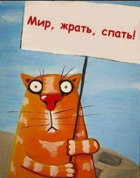 http://s9.uploads.ru/t/m0IXO.jpg