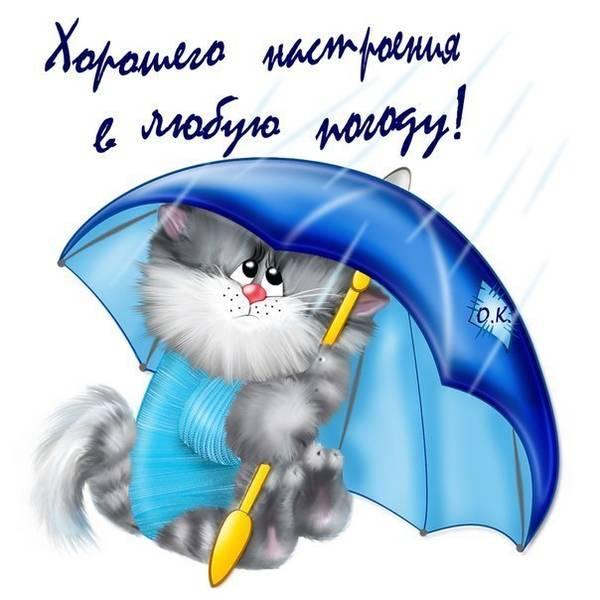 http://s9.uploads.ru/t/mK4v9.jpg