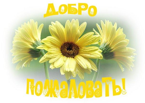 http://s9.uploads.ru/t/mhqUA.jpg
