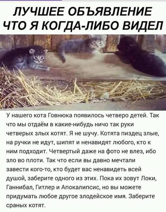 http://s9.uploads.ru/t/n8fl3.jpg