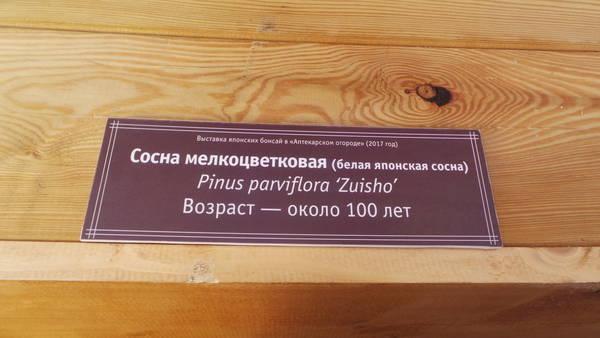 http://s9.uploads.ru/t/okRGY.jpg