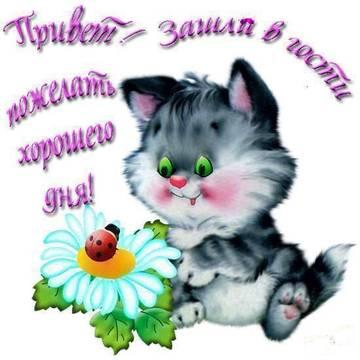 http://s9.uploads.ru/t/p9kNa.jpg