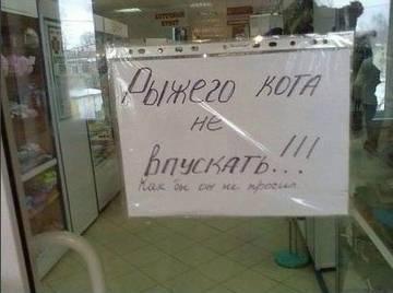 http://s9.uploads.ru/t/pQt2l.jpg