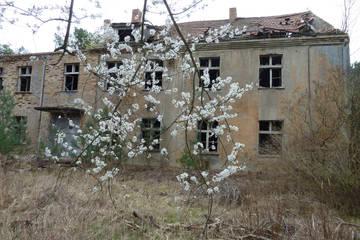 http://s9.uploads.ru/t/phl6m.jpg