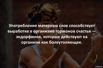 http://s9.uploads.ru/t/psObR.jpg