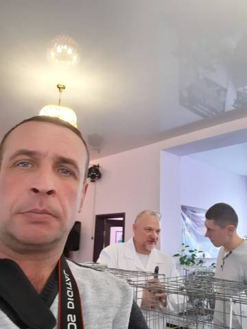 http://s9.uploads.ru/t/qeVFk.jpg