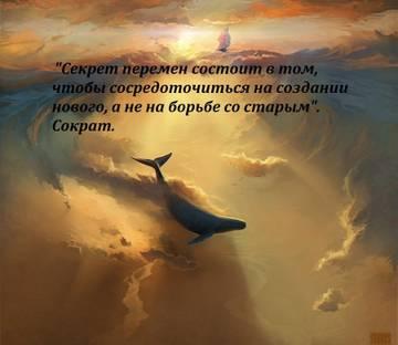 http://s9.uploads.ru/t/qknzQ.jpg