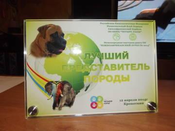 http://s9.uploads.ru/t/qtcU5.jpg