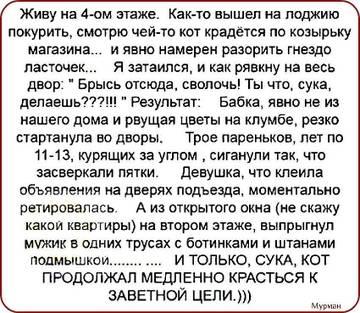 http://s9.uploads.ru/t/rFop6.jpg