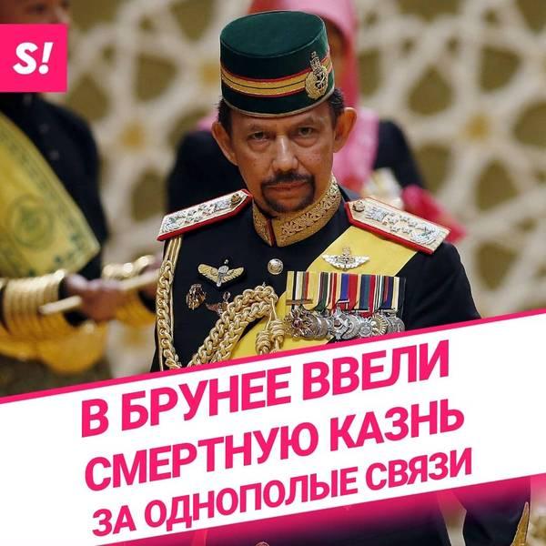 http://s9.uploads.ru/t/rGZcK.jpg