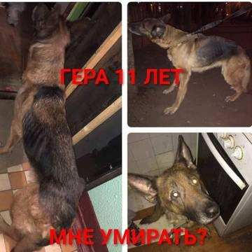 http://s9.uploads.ru/t/racZ9.jpg