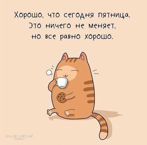 http://s9.uploads.ru/t/rotlw.jpg