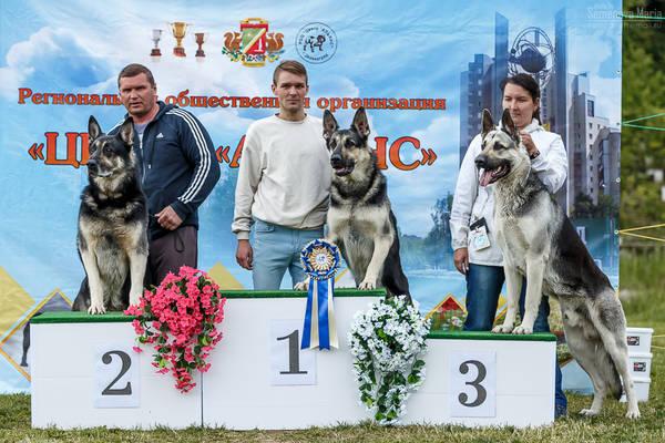 МОНО ВЕО КЧК+ 3 САС 10-11 июня г.Зеленоград SB2O9