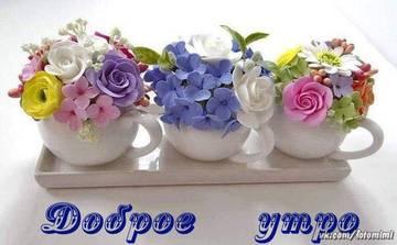 http://s9.uploads.ru/t/sGq1T.jpg