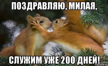 http://s9.uploads.ru/t/sdYJm.jpg