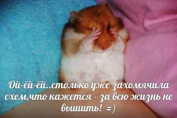 http://s9.uploads.ru/t/slPck.jpg