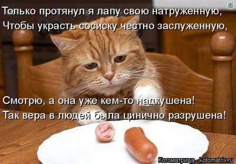 http://s9.uploads.ru/t/sqdHc.jpg