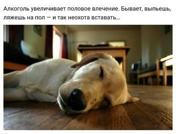 http://s9.uploads.ru/t/tv8bk.jpg