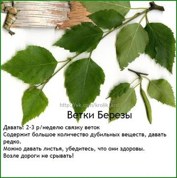 http://s9.uploads.ru/t/uNlXD.jpg