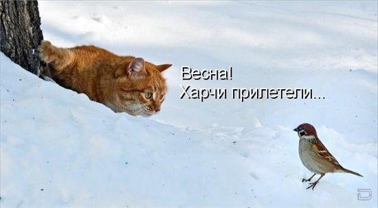 http://s9.uploads.ru/t/unJtS.jpg