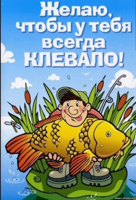 http://s9.uploads.ru/t/vTEMC.jpg