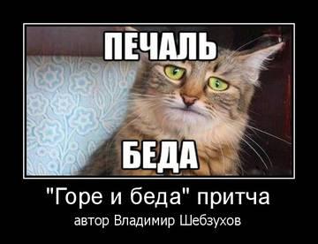 http://s9.uploads.ru/t/vcYEz.jpg